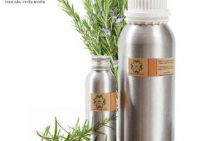 Cách làm tinh dầu hương thảo